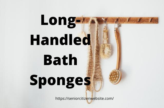 Long Handled Bath Sponge